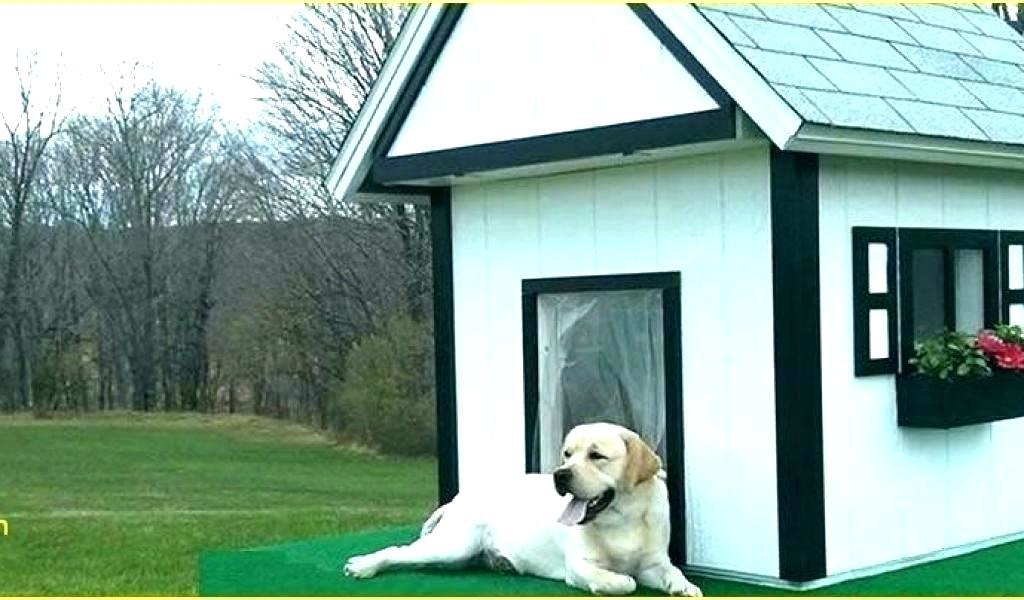 UTILIZATION OF HEATING DOG HOUSES