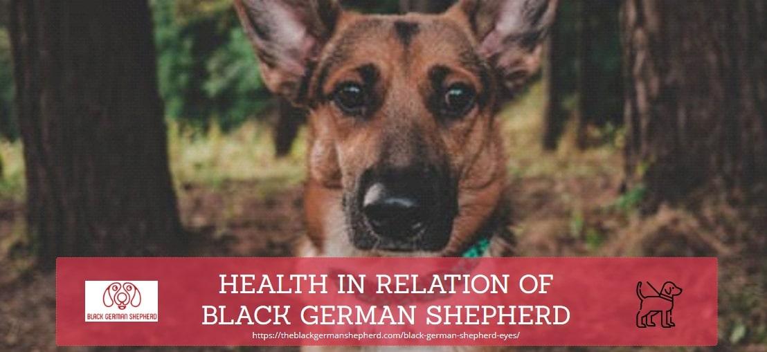 HEALTH IN RELATION OF BLACK GERMAN SHEPHERD DOGS