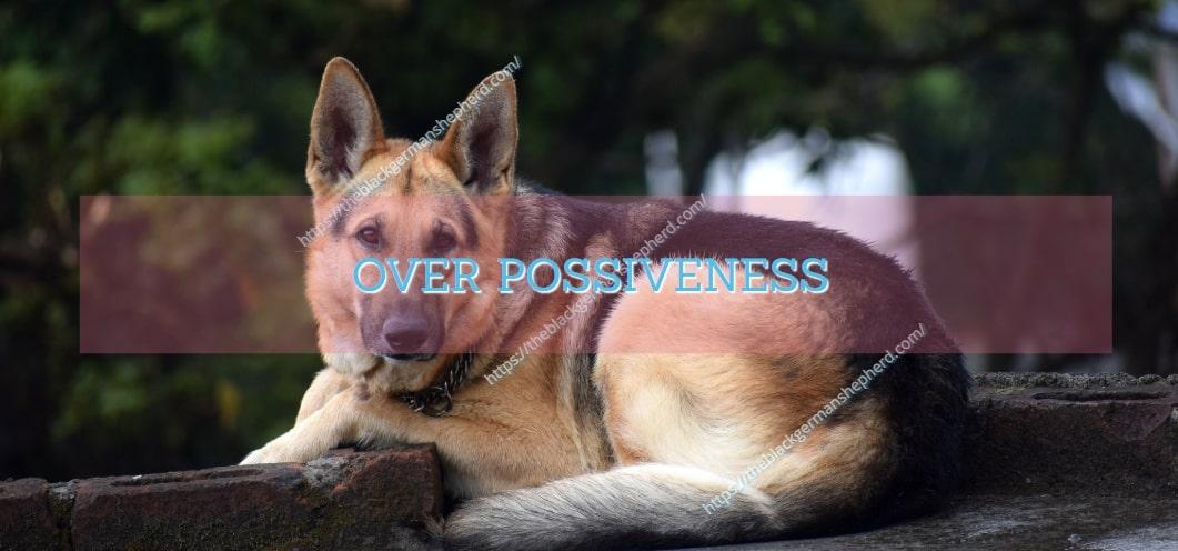 OVER POSSIVENESS