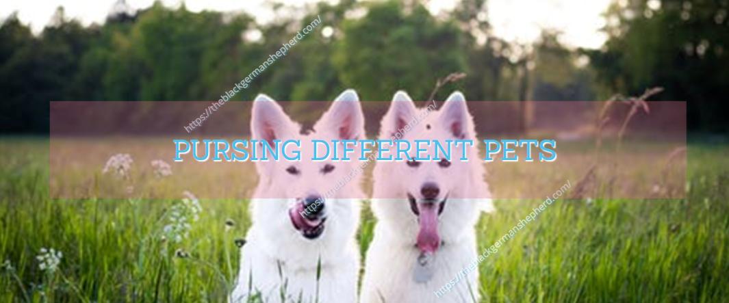 PURSING DIFFERENT PETS