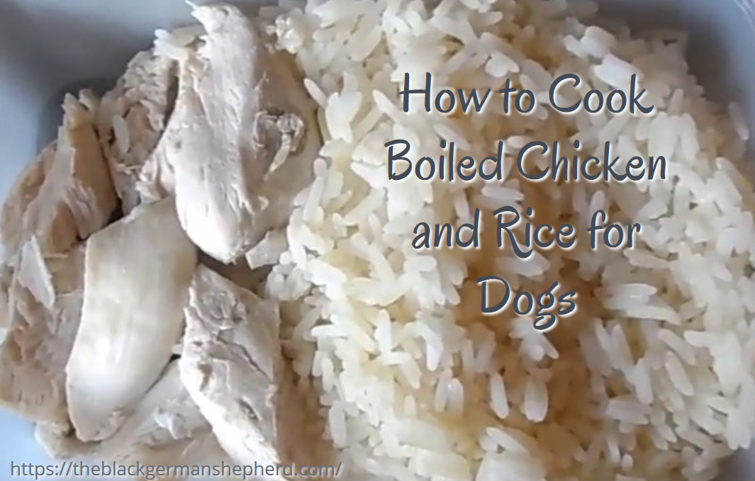 How to Cook Boiled Chicken and Rice for Dogs